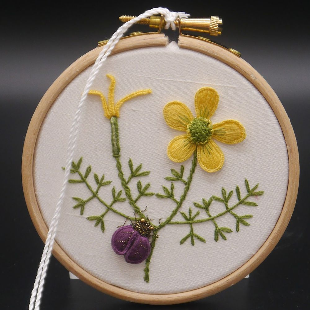 "Image Description of ""Ann Notley – hoop with stump work embroidered flower and beetle""."
