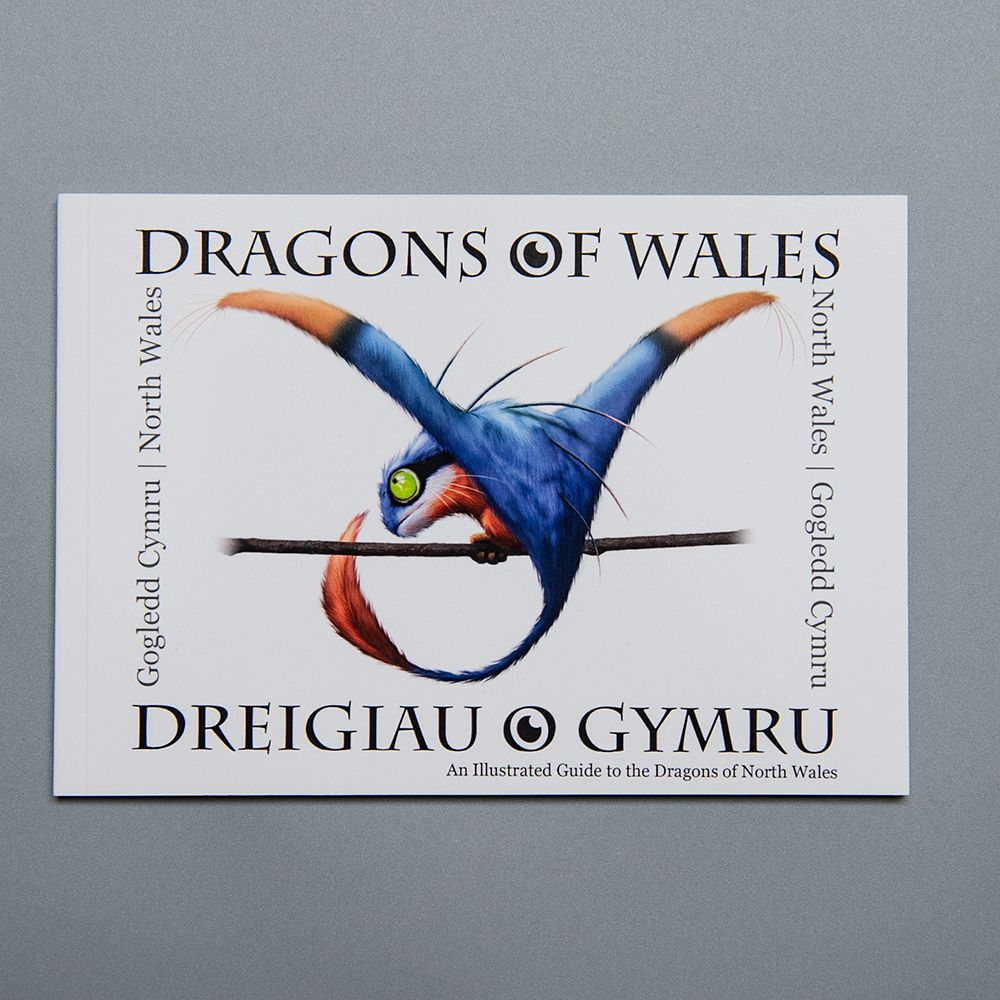 """Image Description of """"Dragons of Wales – North Wales""""."""