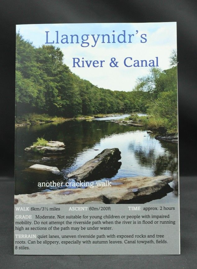 """Image Description of """"Llangynidr's River and Canal """"."""