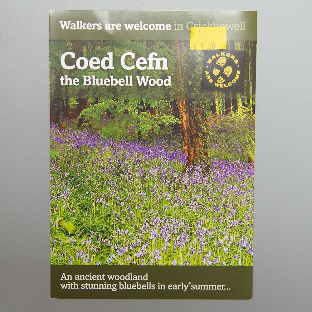 """Image Description of """"Coed Cefn – The Bluebell Wood""""."""